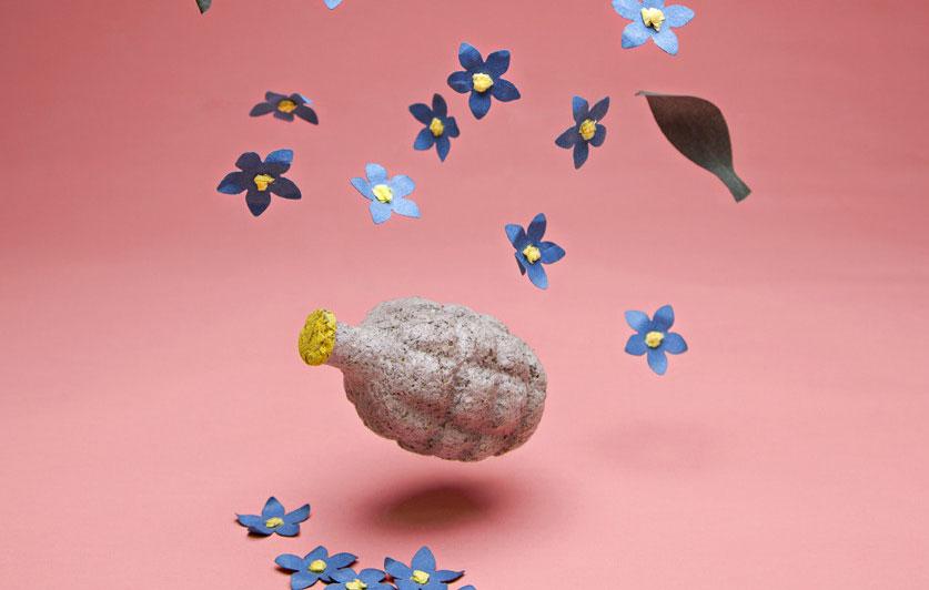 Fröbomba och låt det blomma!