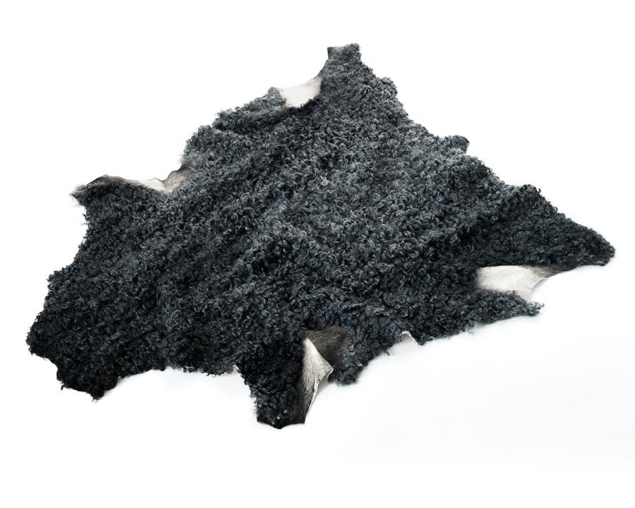 Bioskinn är ett företag som handlar med gotländska får- och lammskinn från den gråulliga rasen Gotlandsfår.