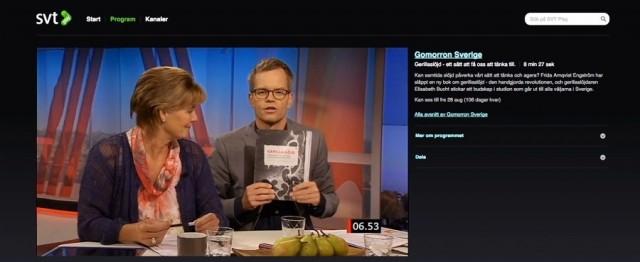Torsdag 28 augusti 2014 gästade jag SVT:s Gomorron och pratade om boken Gerillaslöjd.
