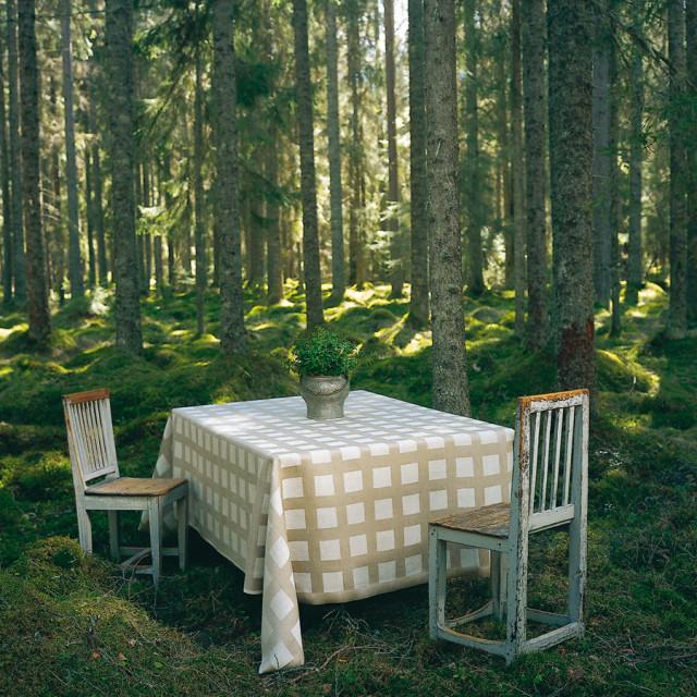 Ytterligare inspiration från Växbo Lin, här syns duken Vargtass. (Foto Växbo Lin)