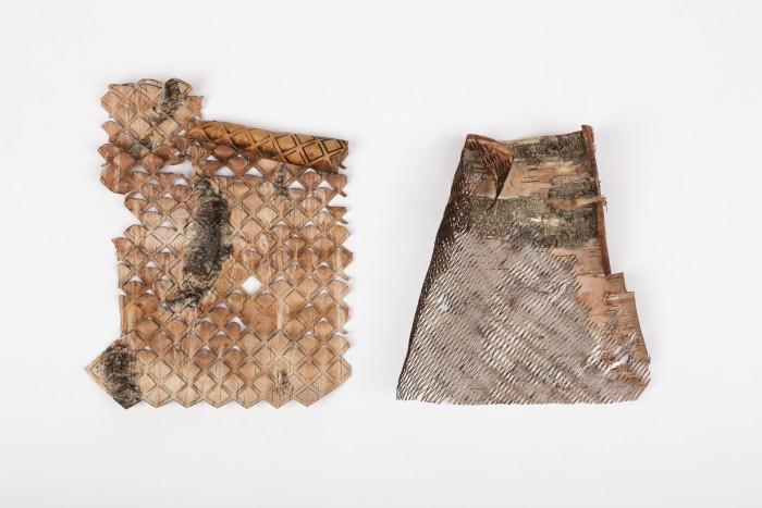 Emma Dahlqvists projekt It's now or näver, där digital teknik möter naturmaterial i ett spännande experiment.  (Foto Svensk Form)