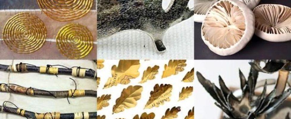 Till skogs med Kaleido – sommarutställning med skogen som tema