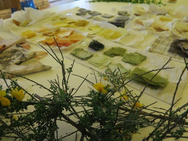 Kursen i experimentell färgning gör kopplingar mellan mat, färg och kultur, där man bland annat tittar på färgningsprocessen utifrån vilket vatten som använts och vilken plats färgämnena hämtats från. Färningens och platsens förutsättningar är viktiga för Jeanette.  (Foto Jeanette Schäring)