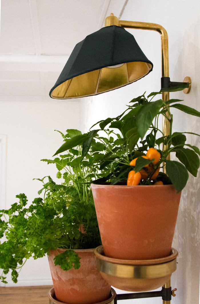 Odlingsträd från Design Stories, som samarbetat med forskare odlingsexperter och boende i Malmö, har utvecklat produkter som är lättskötta och ger skörd året runt -även under mörka vinterkvällar. (Foto Design Stories)