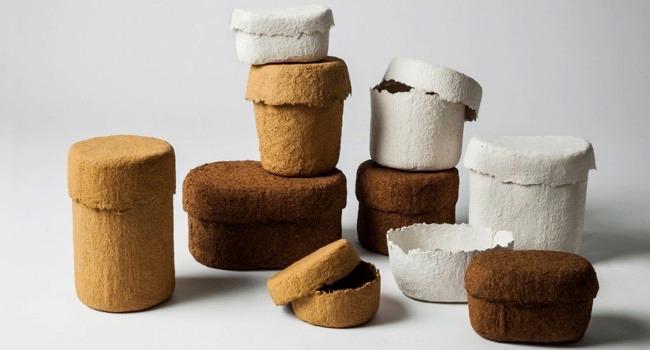 Jennie Adéns omtalade experiment med ticka som hon formar askar av visas också upp i utställningen Björk. (Foto Jennie Adén)