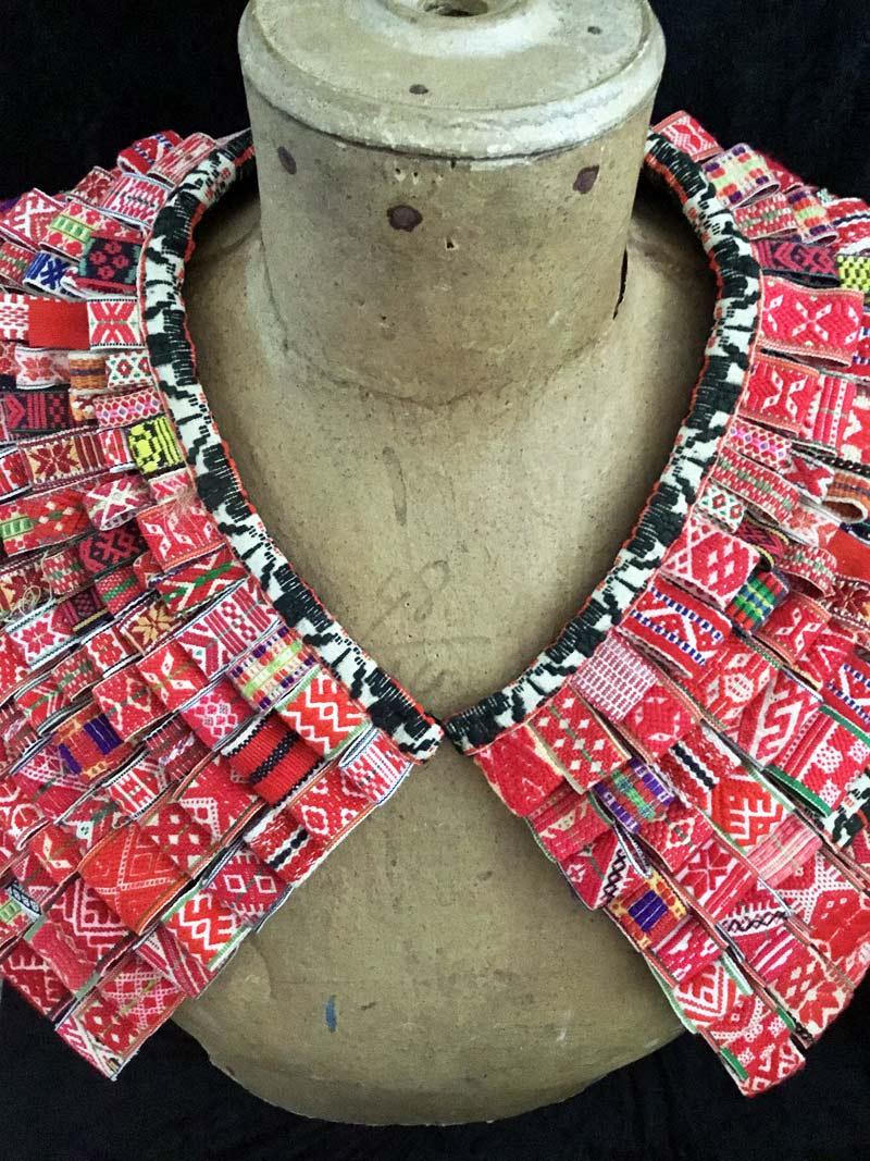 Klackmattekrage med röda dräktband. (Foto Karin Ferner)